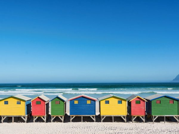 Cape Town Day Tours SA Adventures