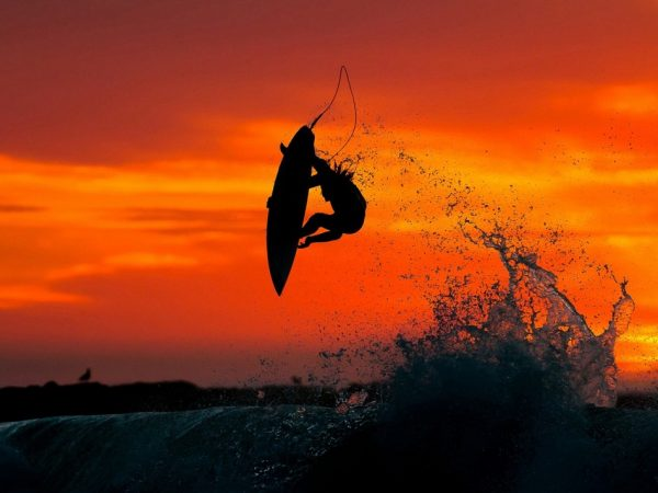 south-arican-surfing-safaris