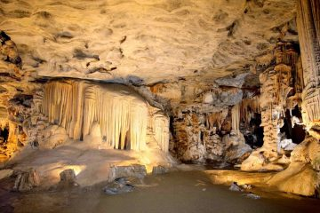 Sterkfontein caves tour and walking with elephants