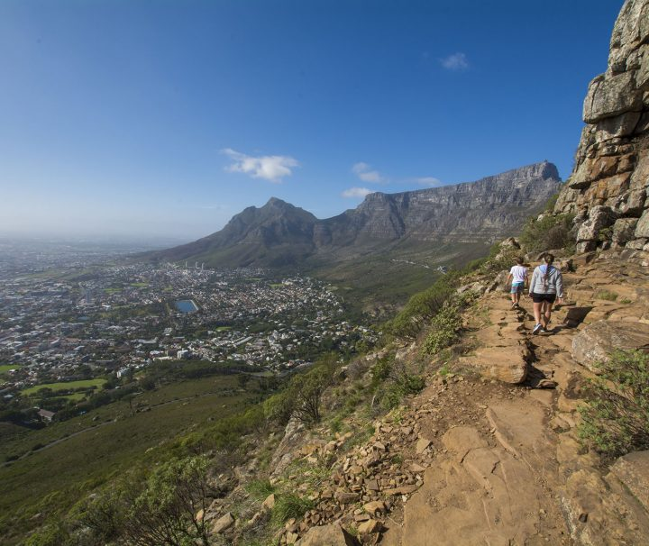 Guided Table-Mountain-Hiking