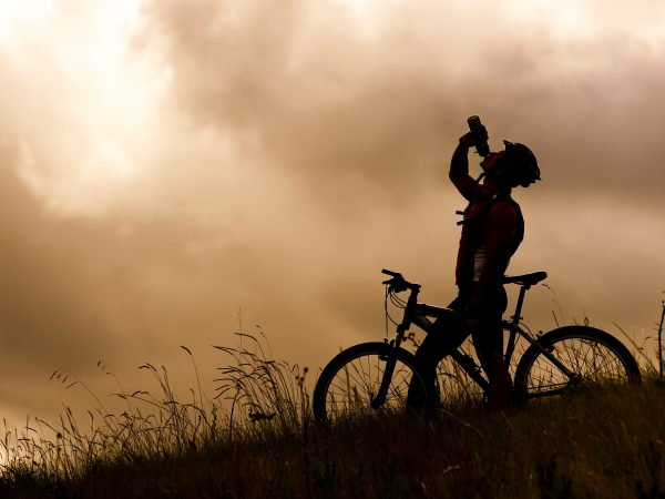 Mountain biking tours and day tours in south africa
