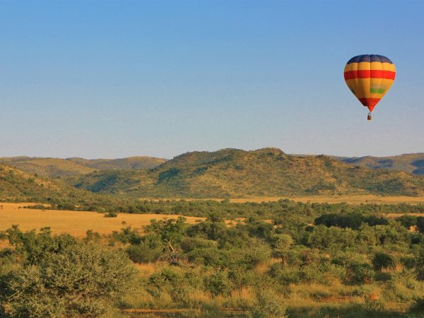 south africa pilanesberg tours and safaris