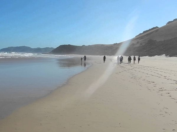 Wildcoast South Africa Hiking tours_South Africa adventure tours