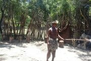 Lesedi African village tour