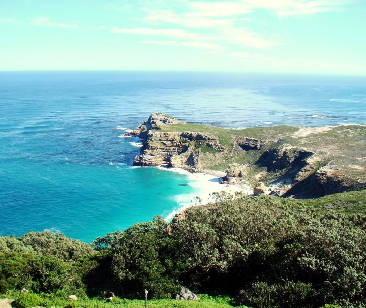 Cape Peninsula Day Tour