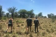 full day tour JHB nature walk_8