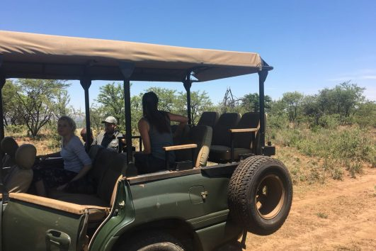full day tour JHB nature walk_9