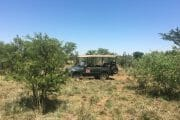 full day tour JHB nature walk_10