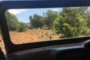 full day tour JHB nature walk_3