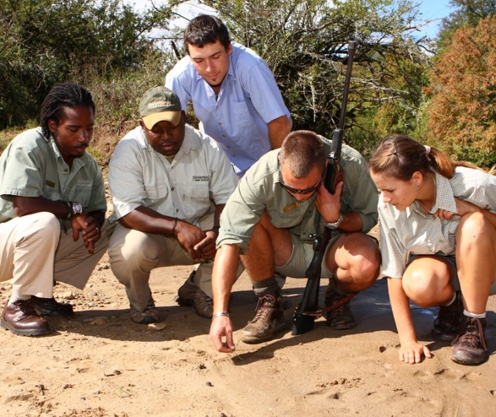 7-day-conservation-course-moholoholo