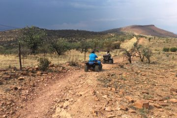 Full day elephant walk and atv nature ride safari